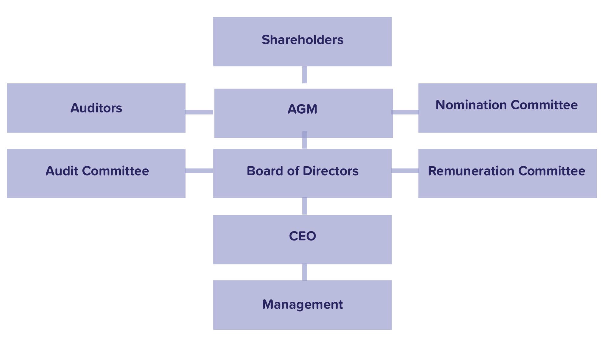 Governance process flowchart